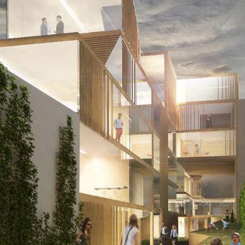 espace végétalisé - architecte Paris - Maud Caubet Architectes