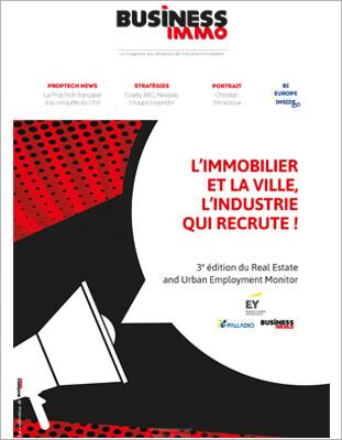 Business-immo-lumiere-Pleyel-ok